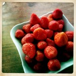 lecker Erdbeeren