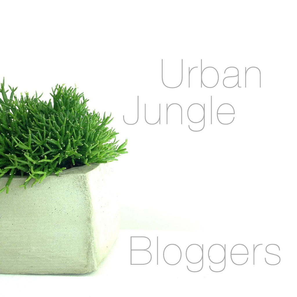 Urban Jungle Bloggers - concrete plant pots