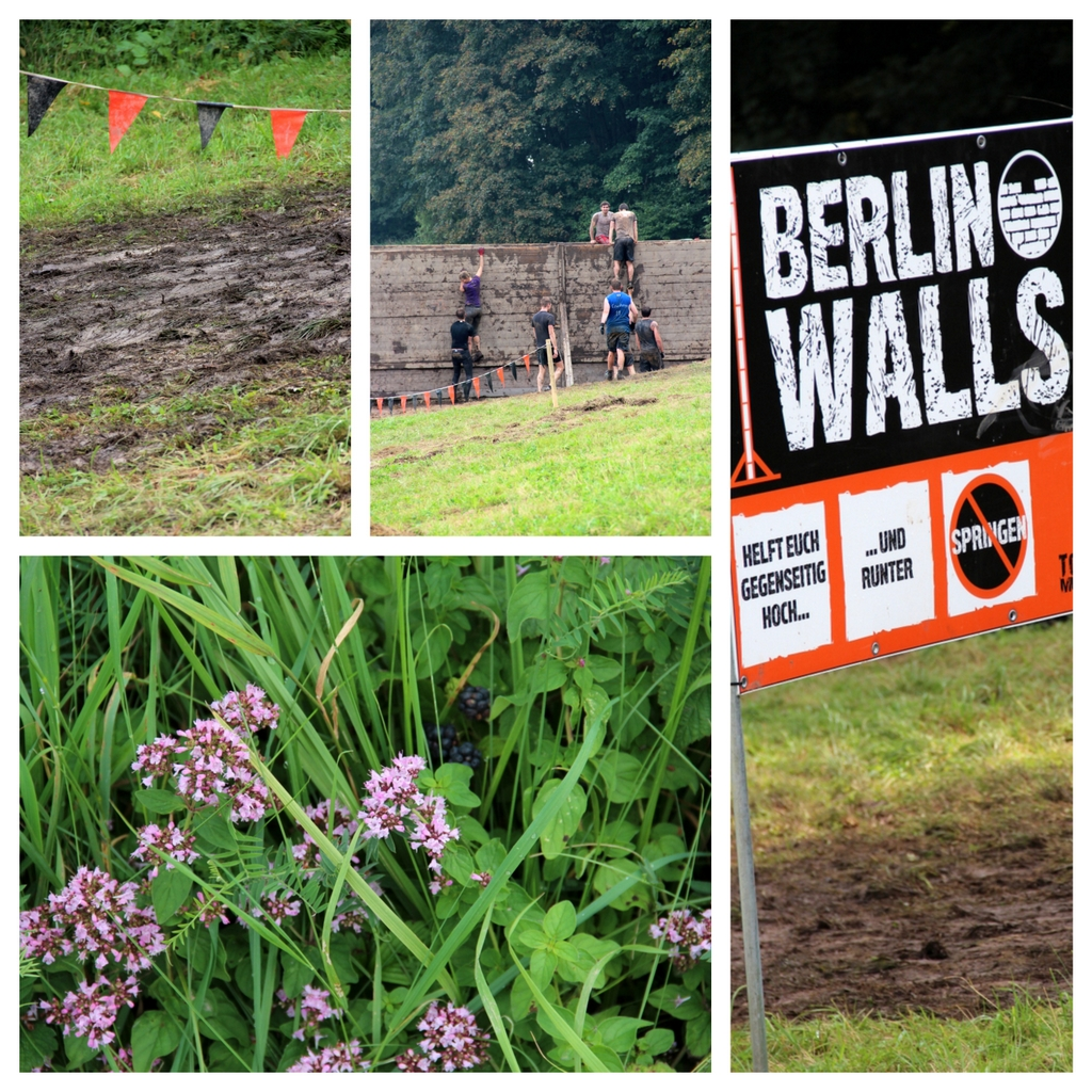 Berlin Walls - Tough Mudder